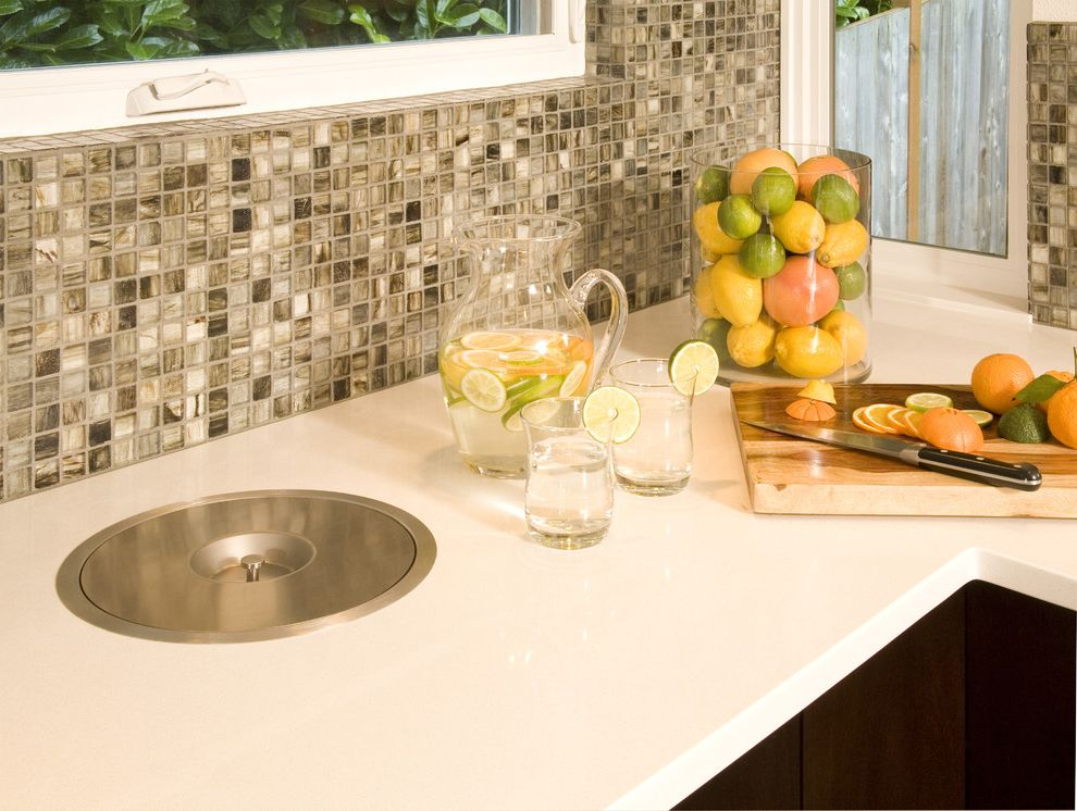 64 Gallon Trash Can   Midcentury Kitchen Also Blanco Compost Bin Dark Cabinets Glass Hafele Mosaic Quartz White Counter