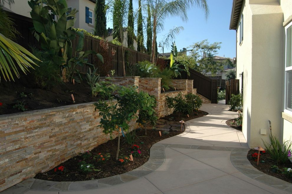 Aaa Valencia Ca with Modern Landscape  and Modern
