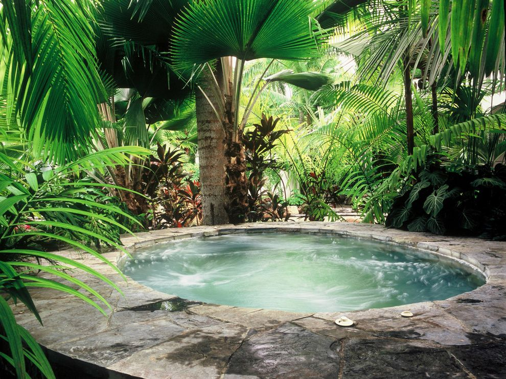 Austin Springs Spa   Tropical Pool Also Hidden Hot Tub Lush Overgrown Palm Trees Pavers Secluded Stone Paving