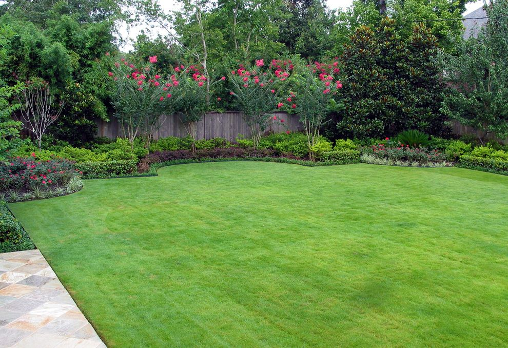 Aztec Grass   Mediterranean Landscape Also Backyard Crepe Myrtles Formal Grass Lawn Pink Flowers Planted Border Turf Wood Fence