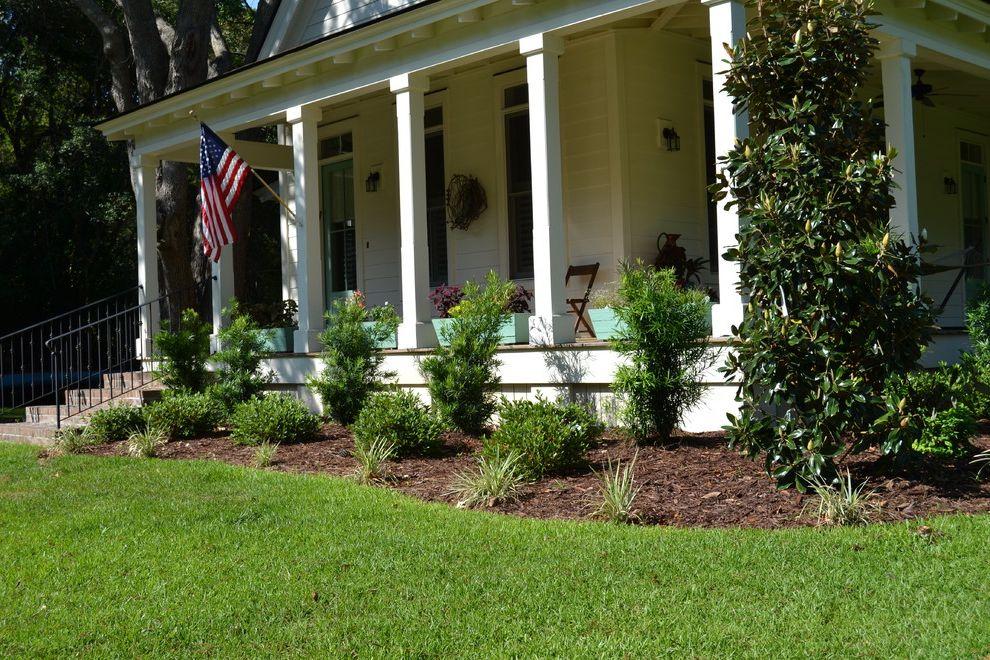 Aztec Grass with  Landscape  and Aztec Grass Front Yard Landscape Magnolia Podocarpus Porch