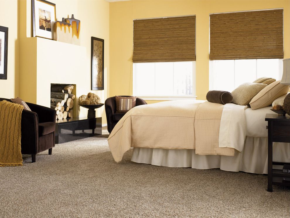Bargain Bobs    Bedroom  and Bed Carpet Chair Comforter Tan Windows