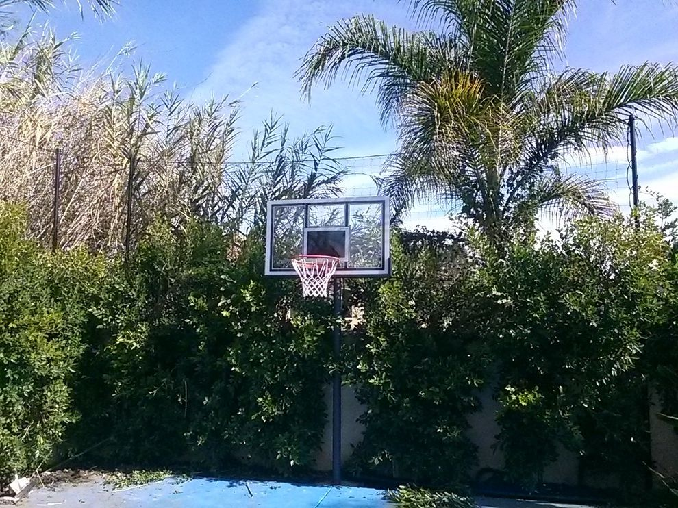 Basketball Barrier Nets with  Spaces Also Basketball Basketball Barrier Nets