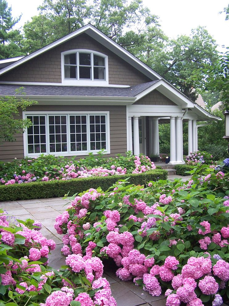 Bayport Flower House   Traditional Landscape  and Arched Window Covered Porch Doric Columns Gable Roof Gray House Gray Siding Groomed Hedges Hedge Border Low Hedge Pink Hydrangeas White Columns