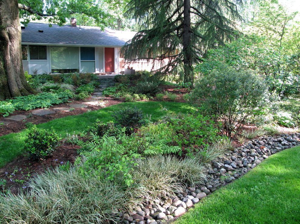 Bennett Property Management   Contemporary Landscape  and Bethesda Rain Garden Shade