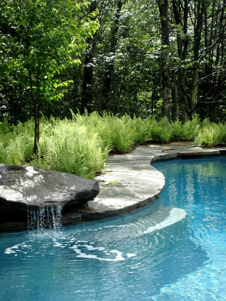 Best Pools in Las Vegas with Traditional Pool  and Ferns Fountain Mass Planting Pool Coping Pool Step Poolside Planting Stone Paving Swimming Pool Vermont Landscape Architect Water Feature Waterfall Yellow Birch