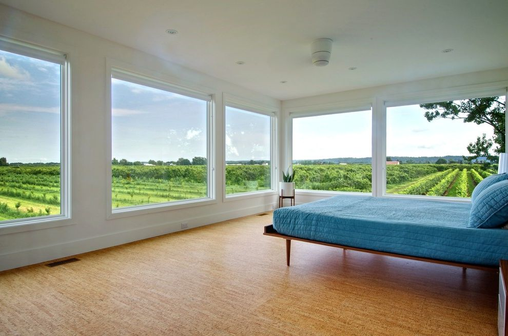 Big Cork Winery with Contemporary Bedroom Also Blue Bedding Corner Window Potted Plant Recessed Lighting Square Windows Vineyard View White Baseboard White Ceiling Light White Pot