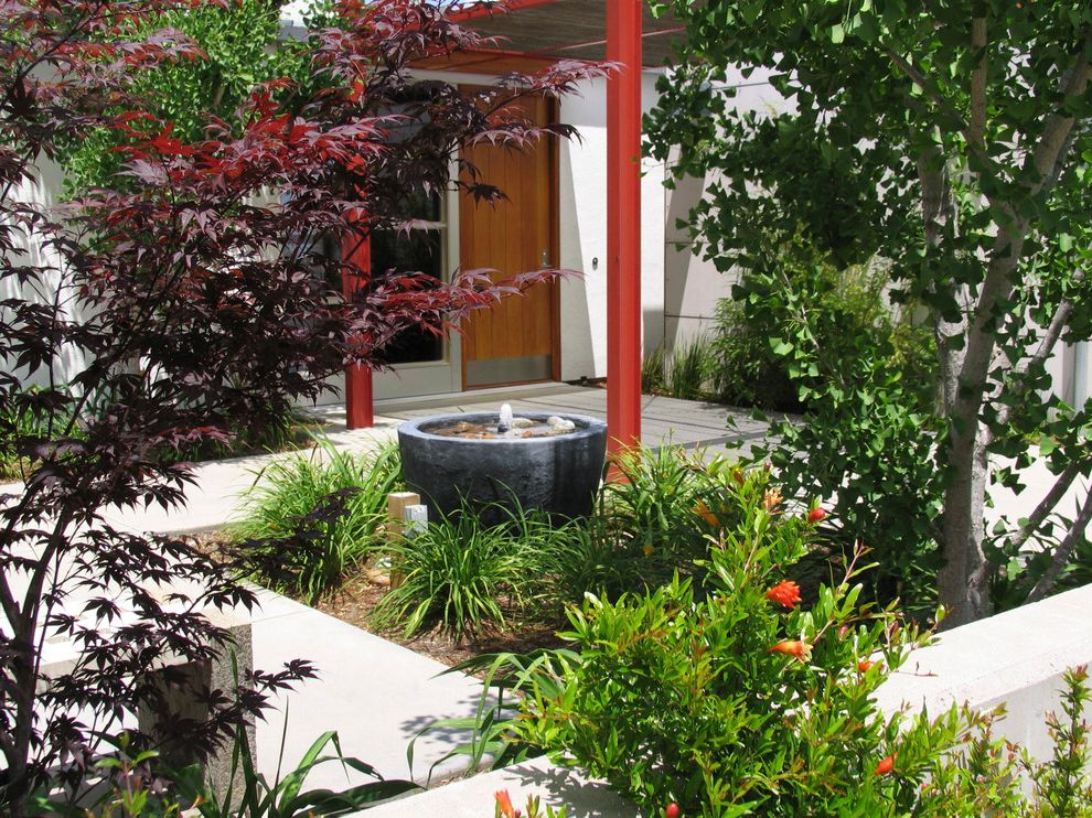 Braintree Building Department   Contemporary Patio Also Arbour Concrete Contemporary Drought Tolerant Entry Fountain Front Entrance Handicap Hill Top Low Water Planting Red Residence Trellis Water Feature Wheelchair Accessible