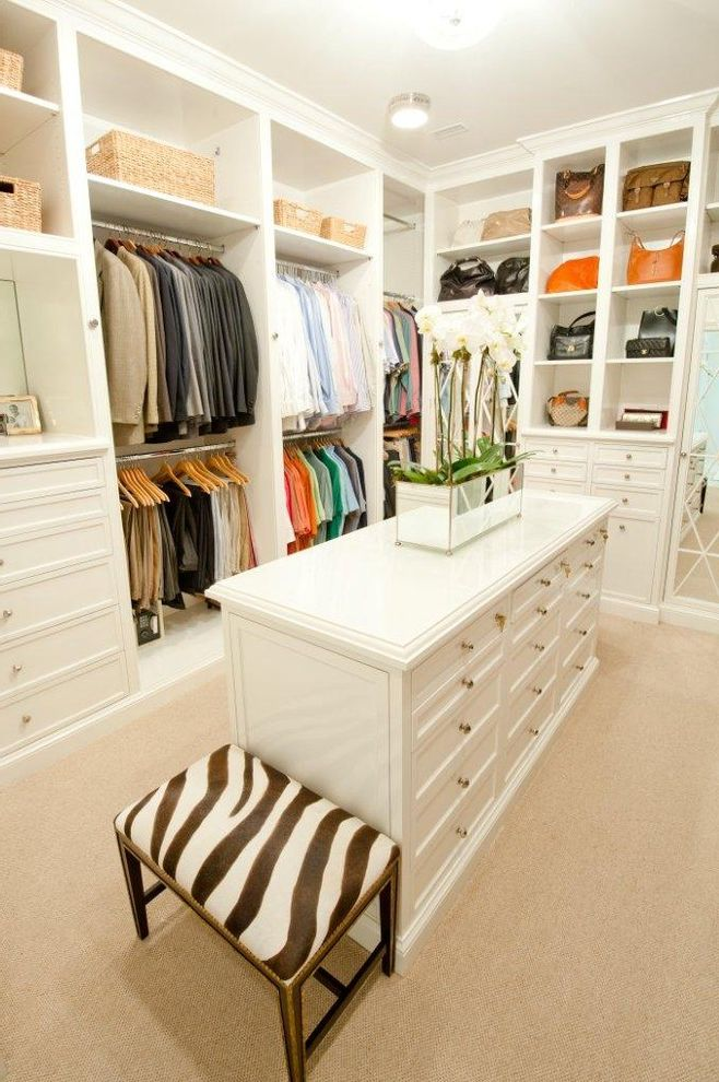 Brass Closet Rod   Traditional Closet  and Built in Storage Ceiling Lighting Island Storage Baskets Walk in Closet Zebra Bench