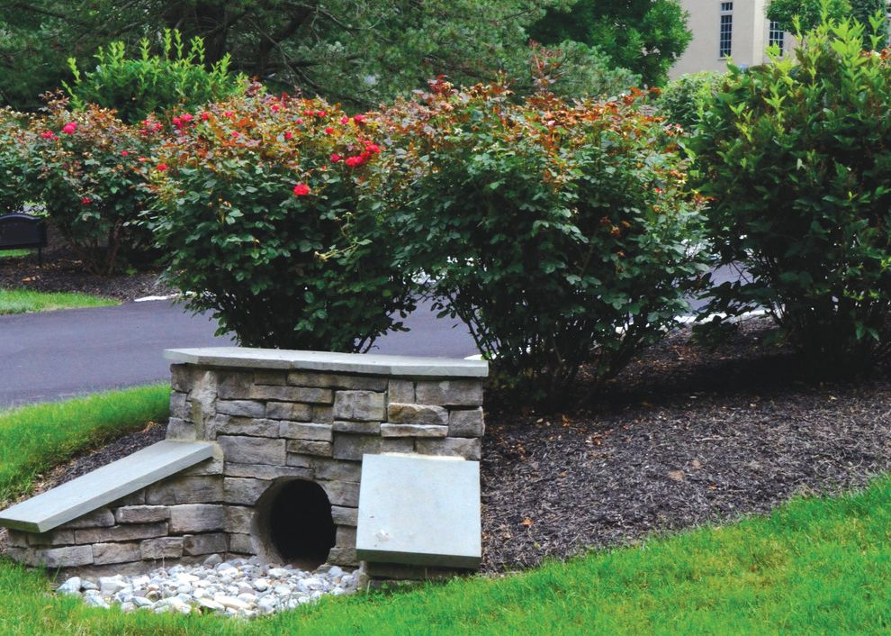 Bucks Country Gardens   Contemporary Spaces Also Curbside Appeal Landscape Outdoor Entryway