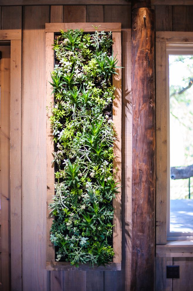 Camp Lucy Dripping Springs    Entry Also Barn Indoor Living Wall Pole Barn Succulent Living Wall Succulents