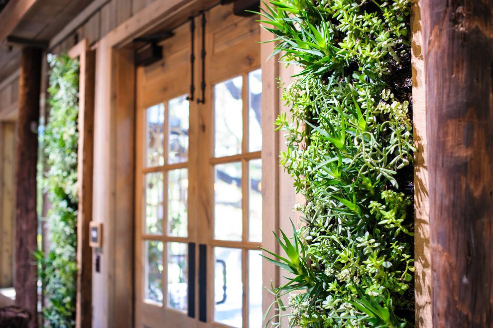 Camp Lucy Dripping Springs   Farmhouse Entry  and Alder Door Barn Glamorous Living Wall Re Purposed Barn Rough Luxe Rustic Luxe Succulent Living Wall Succulents