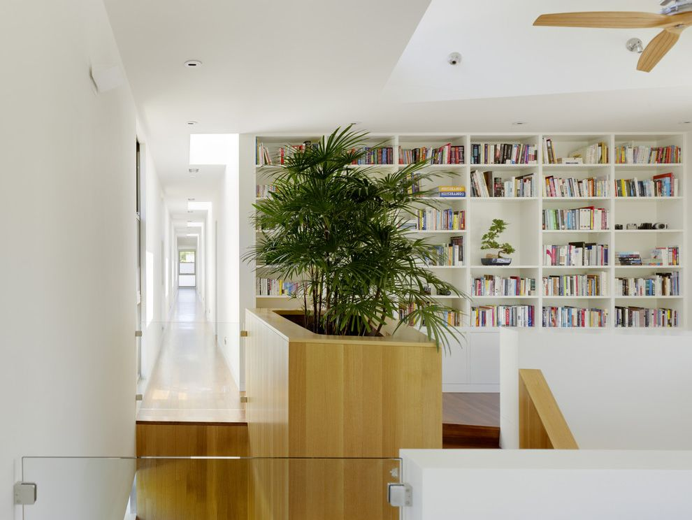 Case Study Planters   Modern Hall Also Built in Bookcase Built in Planter Ceiling Fan Ceiling Lighting Glass Railing Indoor Planter Light Tone Wood Stairs White Walls Wood Railing