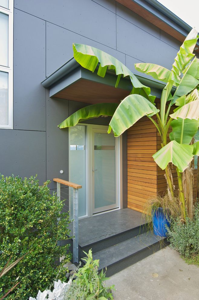 Cement Fiberboard Siding   Contemporary Entry Also Blue Ceramic Cable Railing Entry Fiber Cement Gray Palm Tree Rain Screen Side Lite Translucent Glass Wood Planks