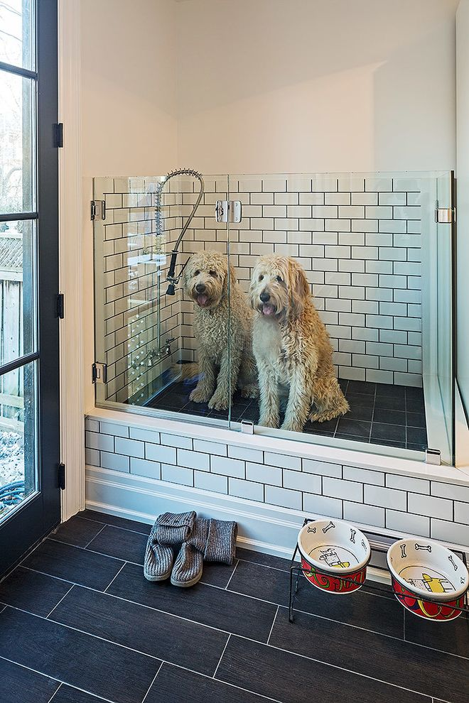 Ceramic Dog Bowls with Stand with Contemporary Laundry Room  and Black Door Black Floor Tile Dark Grout Dog Shower Dog Wash Frameless Glass Door Glass Door Handshower Pet Shower Walkout White Subway Tile White Walls