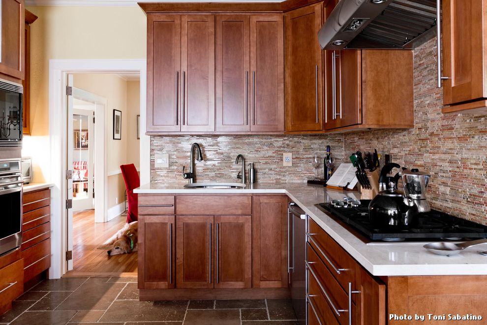 Pet Friendly Kitchen Remodel $style In $location