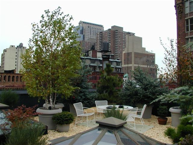 Chelsea Garden Center    Spaces Also Apartment Garden Garden Garden with a View New York City Rooftop Raised Garden Beds Raised Gardens Rooftop Rooftop Garden