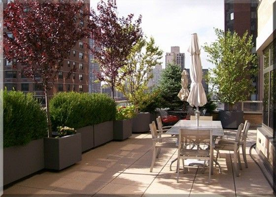 Chelsea Garden Center with  Spaces  and Arch Covered Arch Green Covered Arch New York City Penthouse New York City Skyline Penthouse Penthouse Garden Penthouse with a View