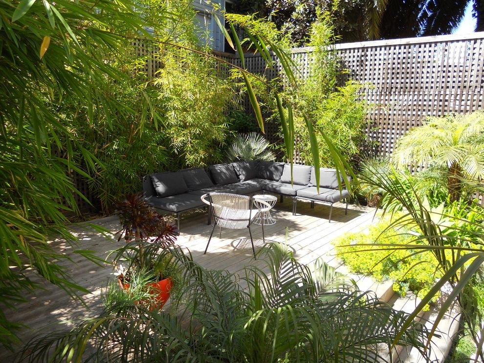 Chondropetalum Tectorum with Contemporary Deck Also Concrete Drought Ipe Deck Modern Garden Patio