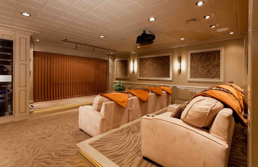 Columbia Sc Theaters   Transitional Basement Also Basement Home Theater Movie Room Movie Theater