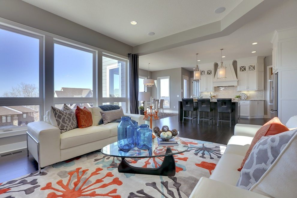 Coral Colored Area Rugs with Transitional Living Room  and Area Rug Blue Glass Vases Clerestory Cabinets Glass Wall Orange Candlestick White Leather Couches