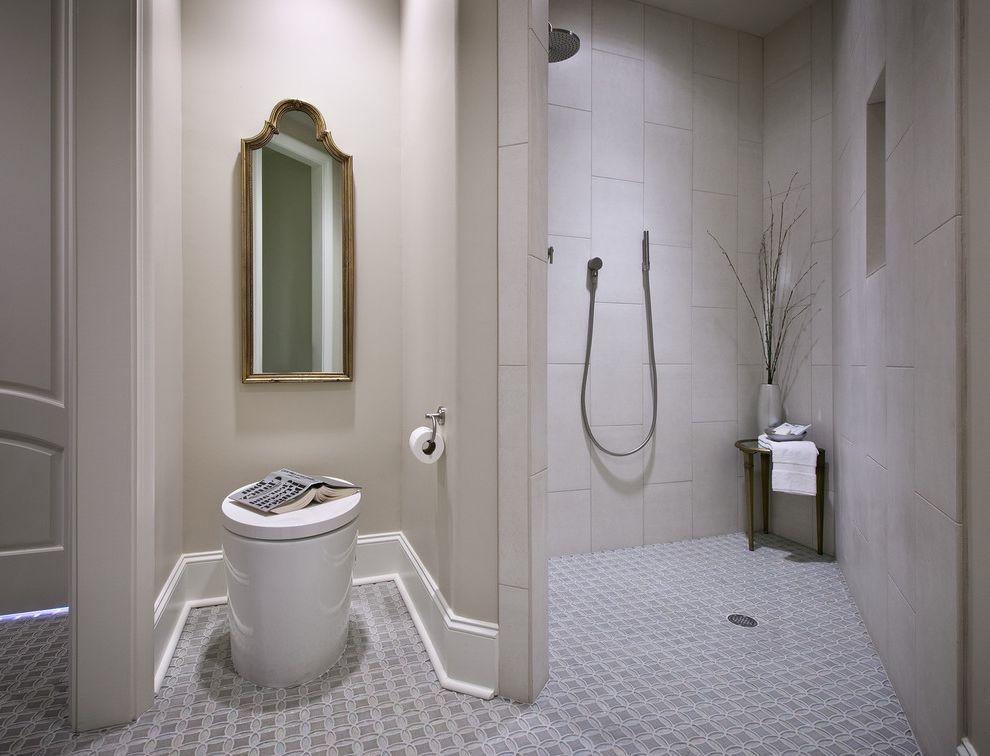 Costco One Piece Toilet Contemporary Bathroom And Baseboards