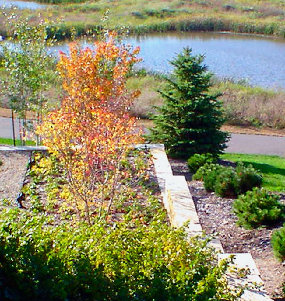 Craigs Mn   Contemporary Landscape  and Green Installation Low Maintenance Minnesota Multi Level Terrace Native Prairie Installation Native Stone Entertaining Area Seasonal Interest