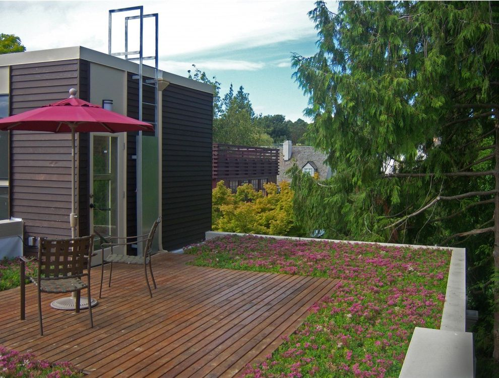Deck Designs Lowes   Contemporary Exterior Also Deck Glass Door Green Roof Living Roof Patio Furniture Patio Umbrella Roof Deck Sedums Sustainable Terrace Wood Flooring Wood Siding
