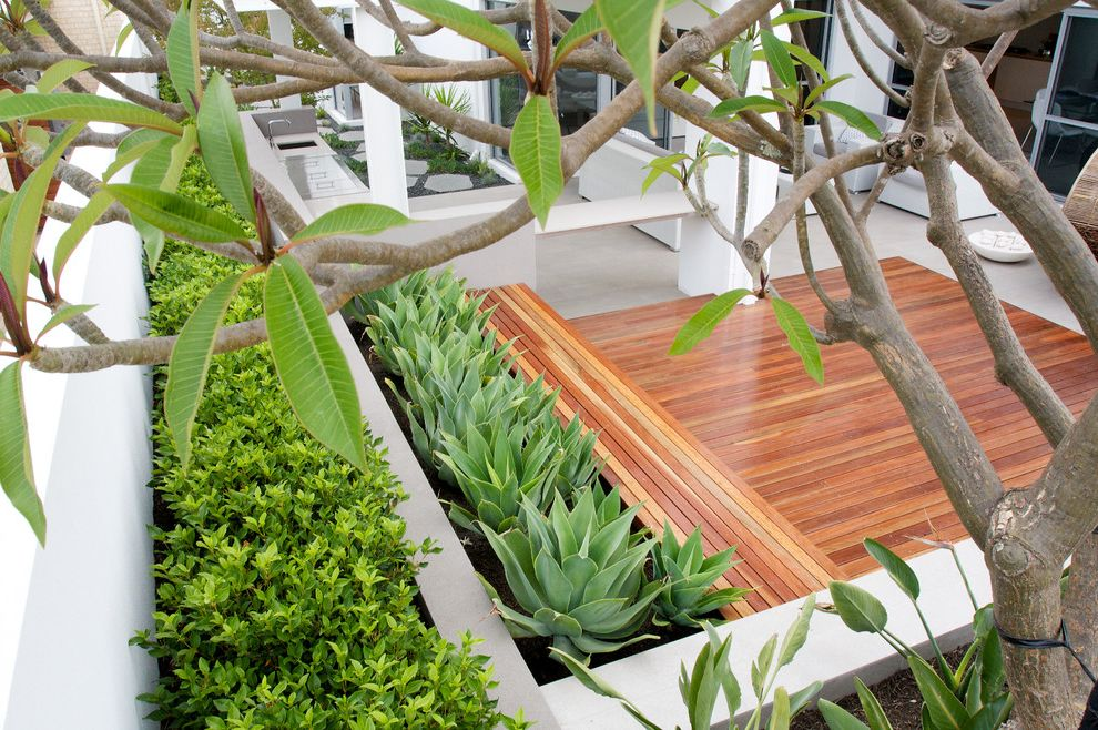 Deck Designs Lowes with Contemporary Deck  and Deck Geometric Hedge Mass Planting Minimalist Order Planters Succulents Terraced Wood Bench