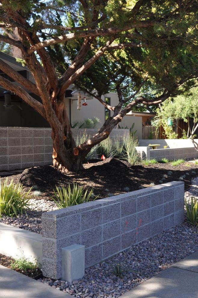 Decorative Concrete Blocks for Sale   Modern Landscape  and Modern