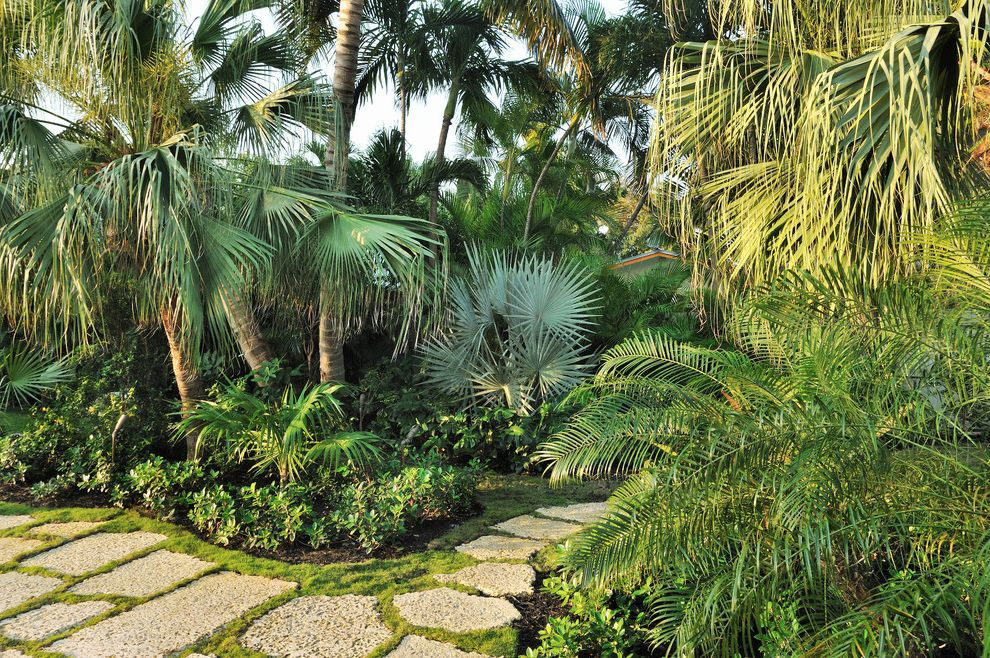 Dinnerware Sets for 8 with Tropical Landscape Also Curved Path Garden Path Paradise Palm Trees Stepping Stones Stone Pavers
