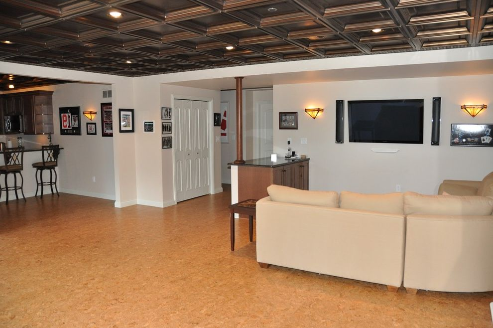 Drop Ceilings for Basements   Traditional Basement  and Traditional