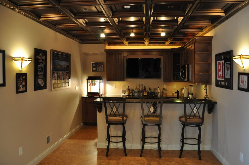 Drop Ceilings for Basements with Traditional Basement  and Traditional