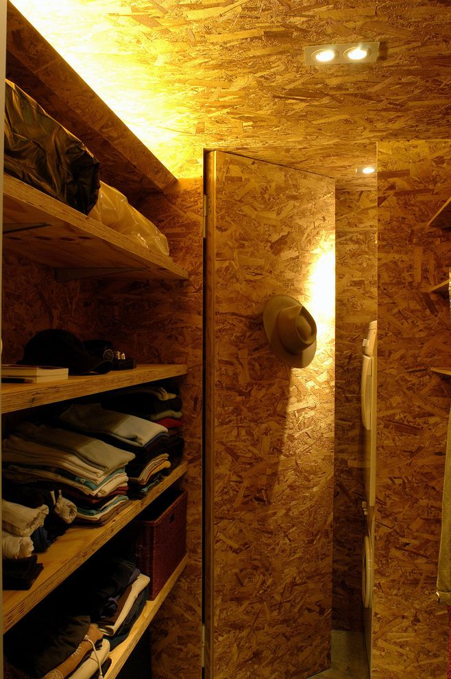 Easy Closets.com with Contemporary Closet Also Built in Storage Cove Lighting Hidden Door Oriented Strand Board Osb Walk in Closet Wall Shelves
