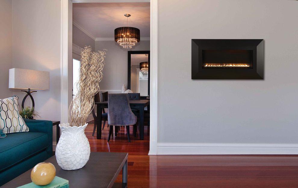 Empire Comfort System   Contemporary Family Room Also Contemporary
