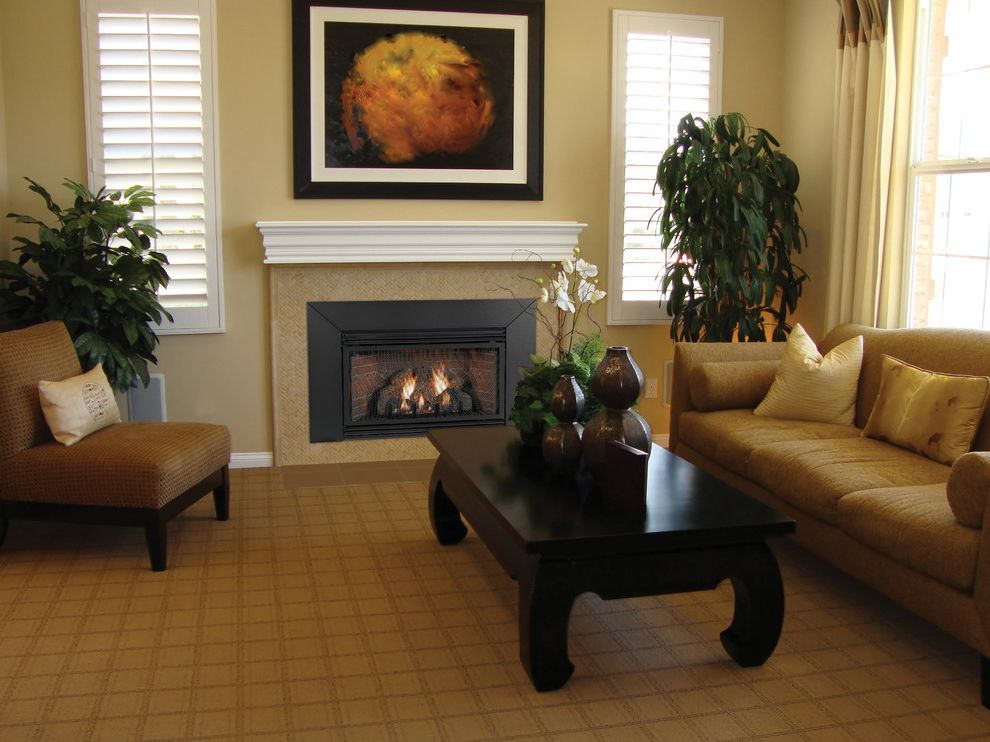 Empire Comfort System   Contemporary Family Room  and Contemporary
