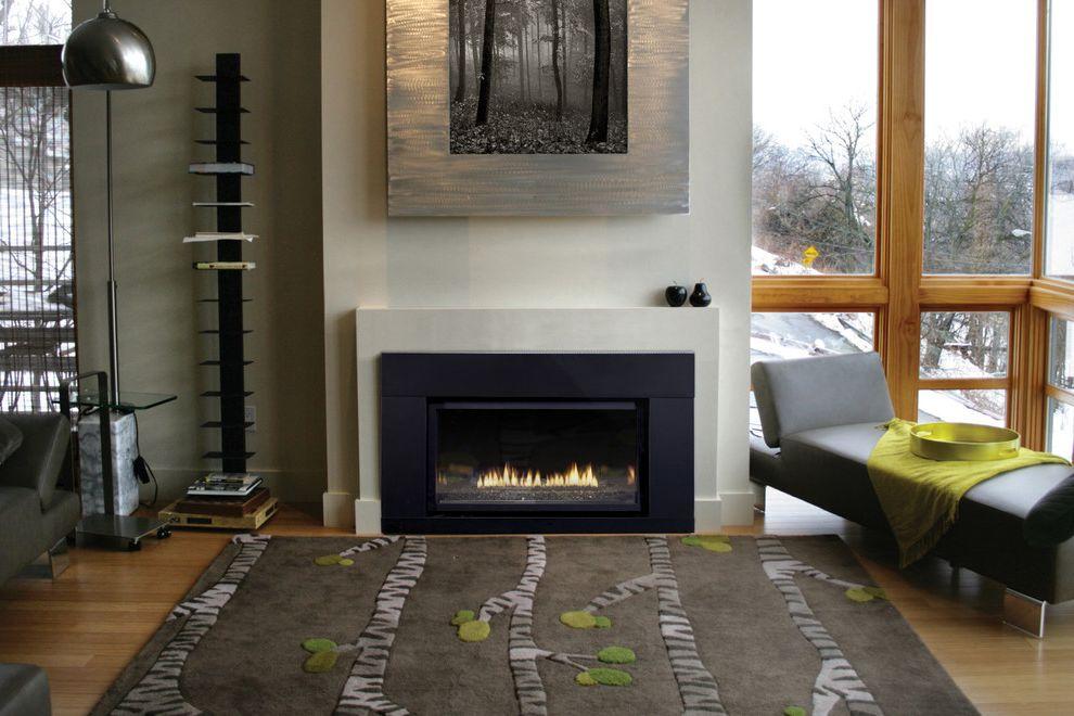 Empire Comfort System   Contemporary Living Room Also Contemporary