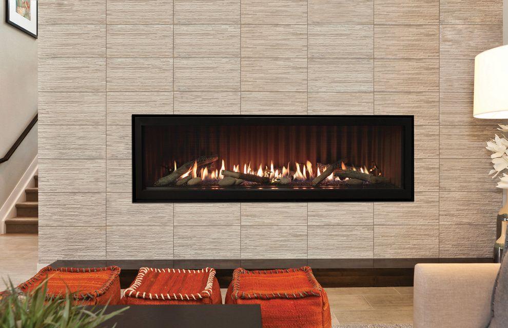 Empire Comfort System   Contemporary Living Room  and Contemporary