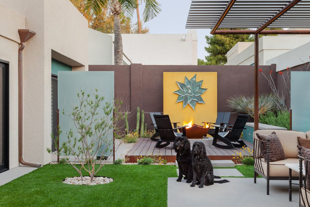 Fake Grass for Dogs with Contemporary Landscape  and Adirondack Chairs Backyard Cactus Concrete Patio Desert Modern Fire Bowl Garden Wall Midcentury Modern Patio Furniture Platform Deck River Pebbles River Rock Screen Yellow Wall