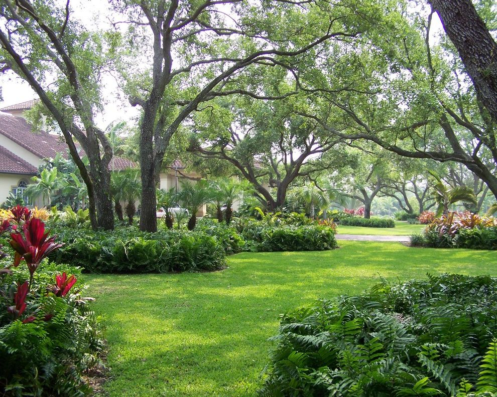 Far Oaks Golf Course with Mediterranean Landscape  and Entry Fern Front Yard Grass Lawn Palm Tree Planting Turf