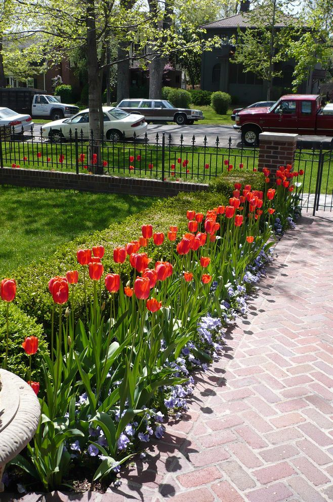 Fence Repair Denver with Traditional Landscape  and Brick Column Brick Pathway Brick Pillar Brick Walkway Front Pathway Front Walkway Grass Lawn Metal Fence Metal Gate Orange Flowers Orange Tulips Purple Flowers Tulips