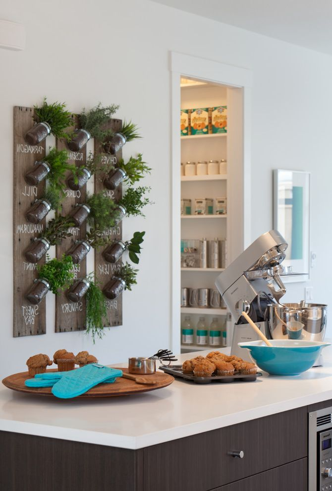 Fresh Start Cleaner   Contemporary Kitchen Also Dark Wood Flat Panel Cabinets Herb Display Herb Garden Island Lazy Susan Mixer Pantry Shelves Small Appliances Wall Art White Countertop White Trim White Wall Wood