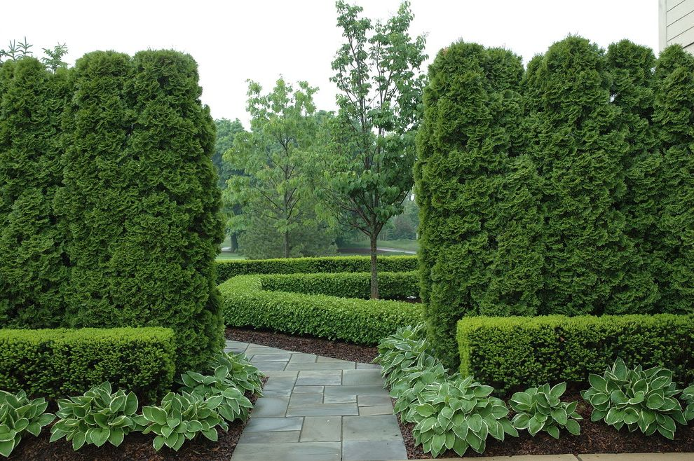 Formal Graden Path With Arborvitae And Boxwood $style In $location