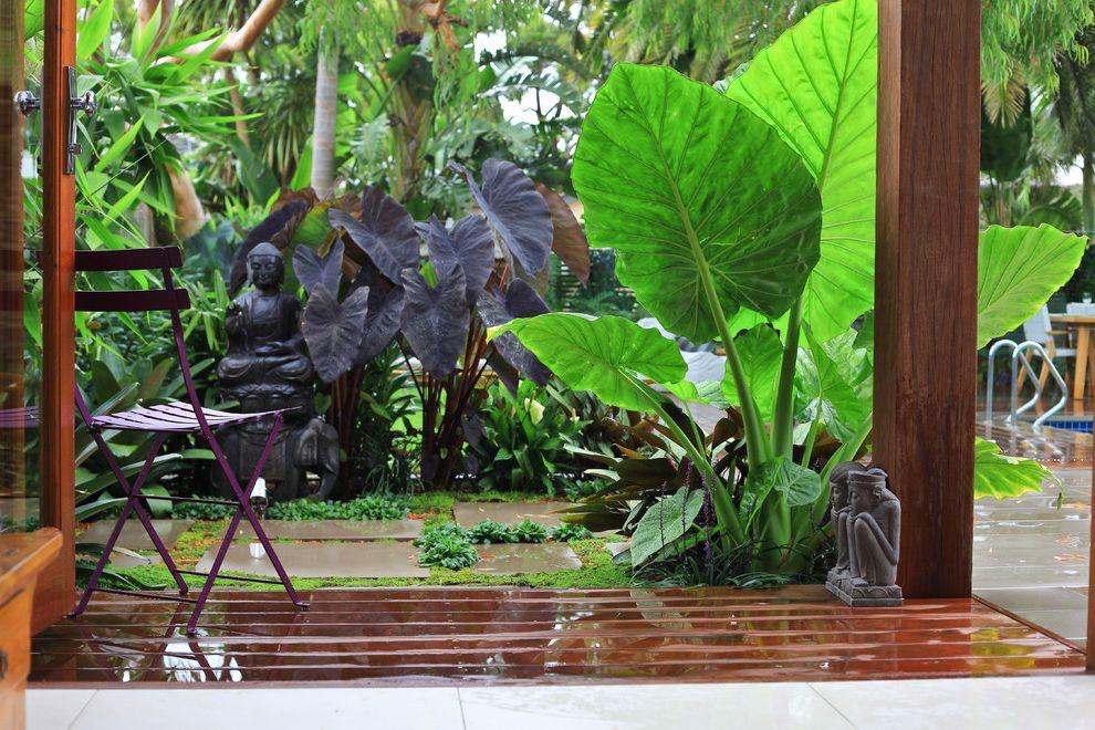 Gentle Giant Movers   Asian Landscape Also Balinese Garden Design Bold Plants Garden Furniture Garden Sculptures Indoor Outdoor Living Lush Garden Modern Asian Garden Tropical Garden Vibrant Garden Design