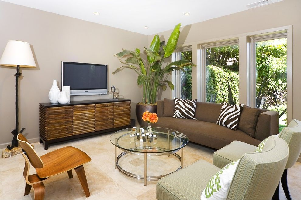 Giant Pot Plants with Contemporary Living Room Also Console Eames Molded Plywood Chair Eco Friendly Zebra