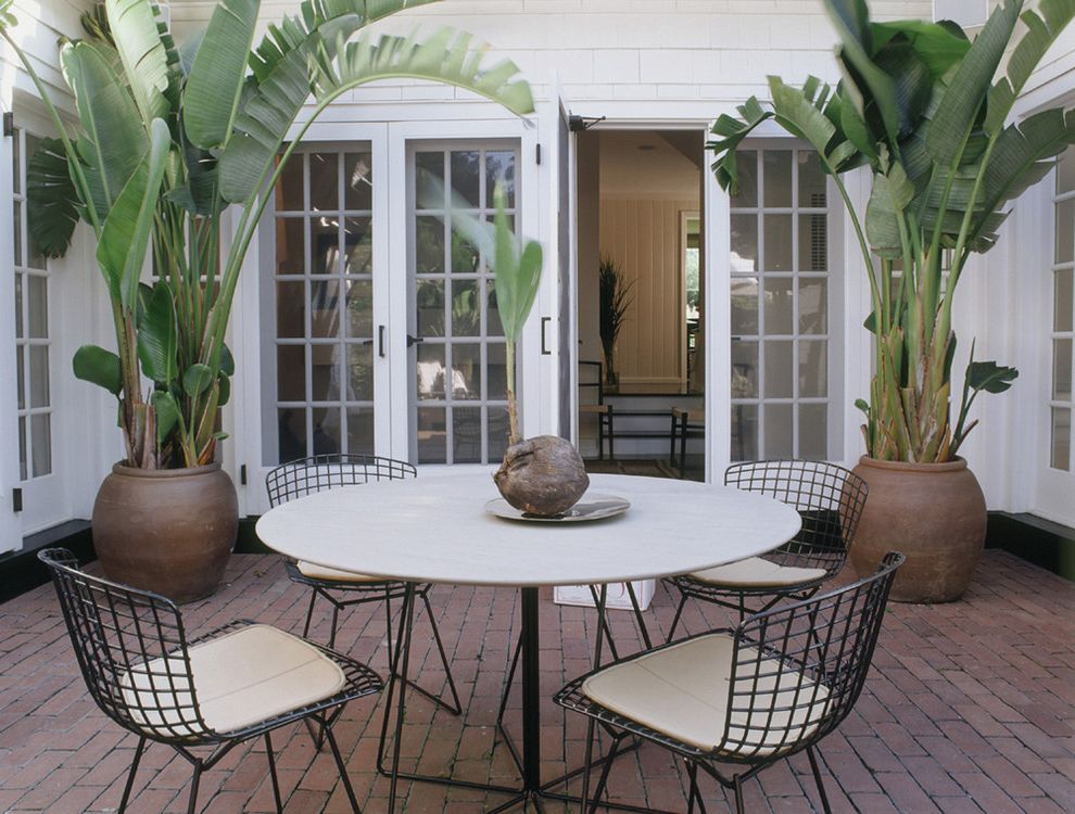 Giant Pot Plants With Contemporary Patio And Brick Paving