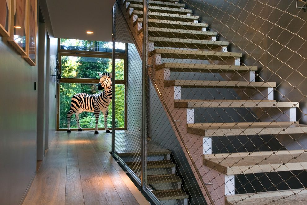 Hanging Lamps with Chain   Contemporary Staircase Also Chain Link Fence Full Size Zebra Light Gray Walls Lighted Zebra Open Risers Open Staircase Recessed Lighting Wide Plank Flooring Wood Floor Wood Tread Zebra Statue
