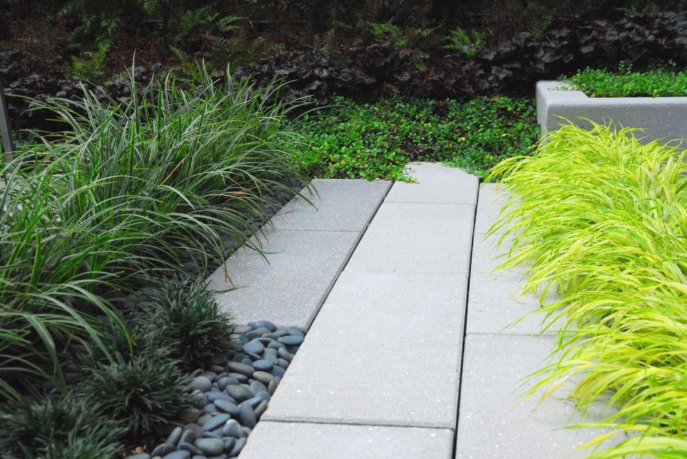 Hanover Pavers   Contemporary Landscape Also Asian Grass Modern Paver Pebble Stone Zen