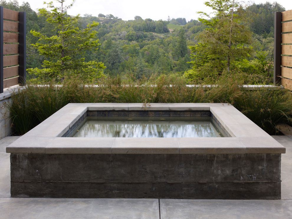 Healdsburg Spa with Traditional Pool Also Concrete Spa