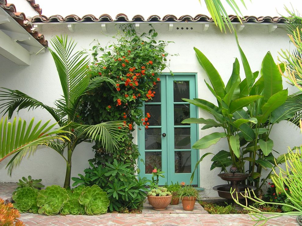 House of Tropicals   Tropical Landscape Also Brick Green French Doors Lush Orange Vine Palms Path Patio Plants Pots Spanish Stucco Succulents Tile Roof